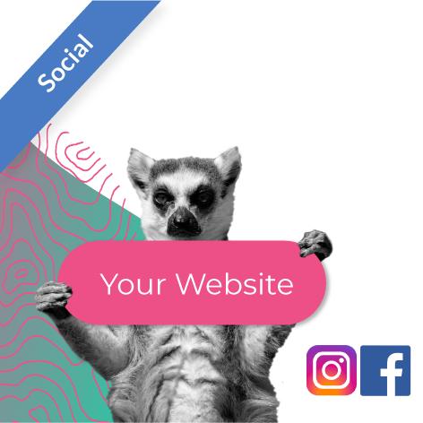 Website Traffic - Social